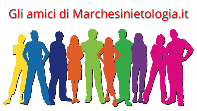 "Immagine evocativa per ""gli amici di Marchesinietologia.it"""