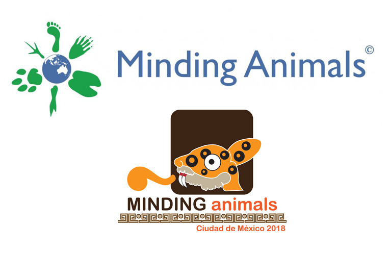 Mindings-animals_2018