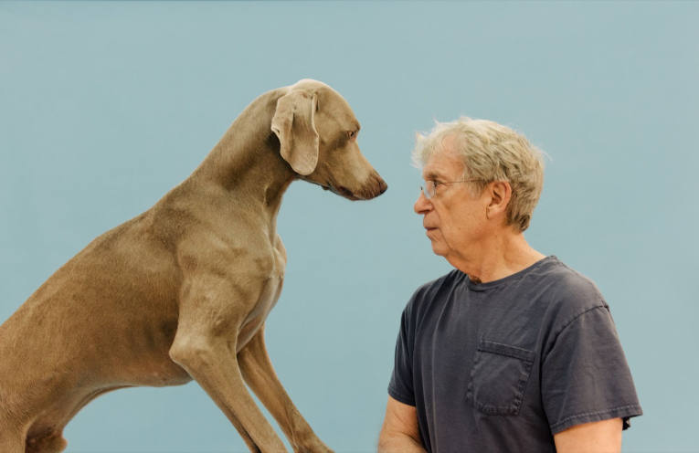William Wegman img